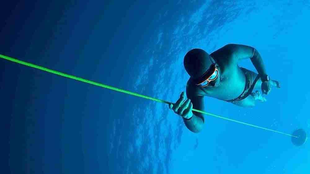 El blood shift o perquè el tòrax de l'apneista no queda aixafat en una immersió profunda